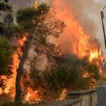 Catástrofe en el Líbano. Más de 100 incendios forestales.