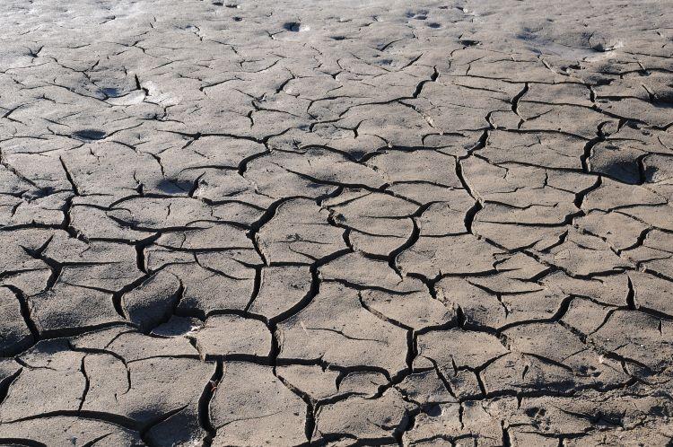 España sufre una situación de sequía preocupante
