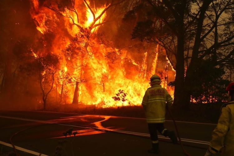 Australia está en llamas