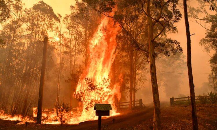 Mega incendio arde sin control al norte de Sídney (Australia)