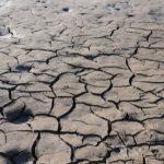 ¡Alerta humanitaria! La peor sequía podría provocar hambruna (Namibia).